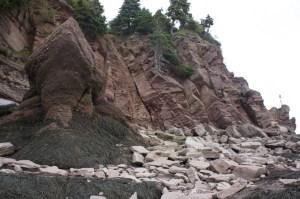 hopewell-rocks