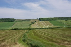south-shore-rolling-hills