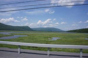 wetlands-perce