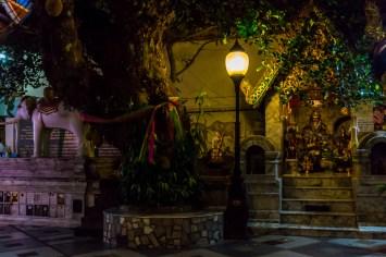 die white elefant statue und andere statuen in wat phra that doi suthep