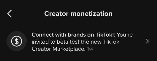 TikTok creator program