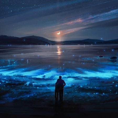 night landscape wallpaper