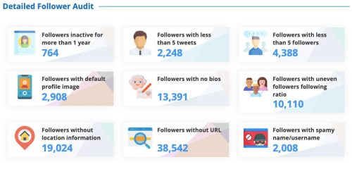 Twitter audit insights