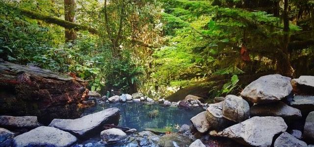 Adventures of Soaking With Naked People At Terwilliger Hot Springs