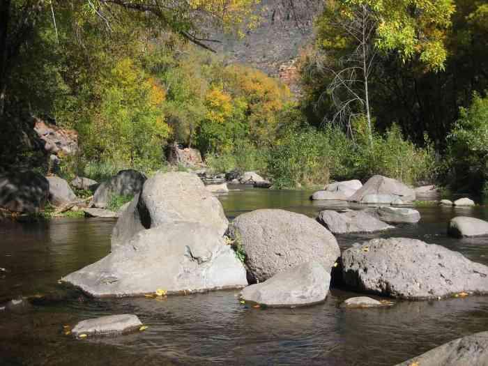 Visit Oak Creek Canyon near Sedona on your Arizona road trip