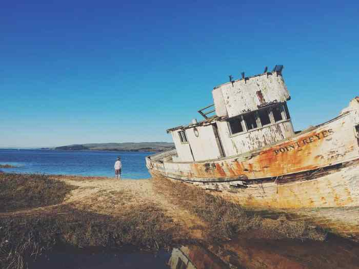 Explore Point Reyes Shipwreck On The Perfect Northern California Road Trip Itinerary