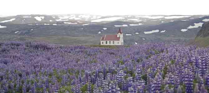 5 Things To Know Before Visiting Iceland In Spring