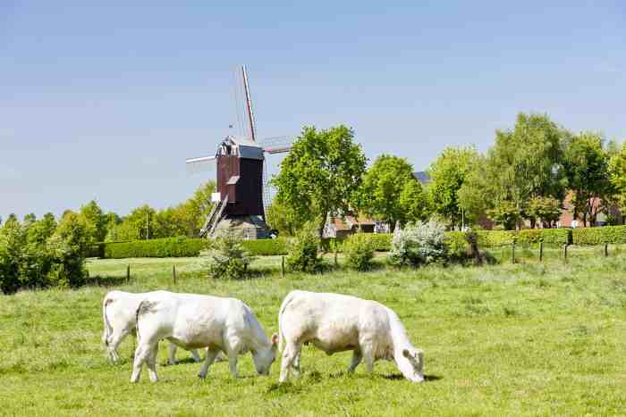 Nord-Pas de Calais Is A Perfect Hiking Location In Northern France