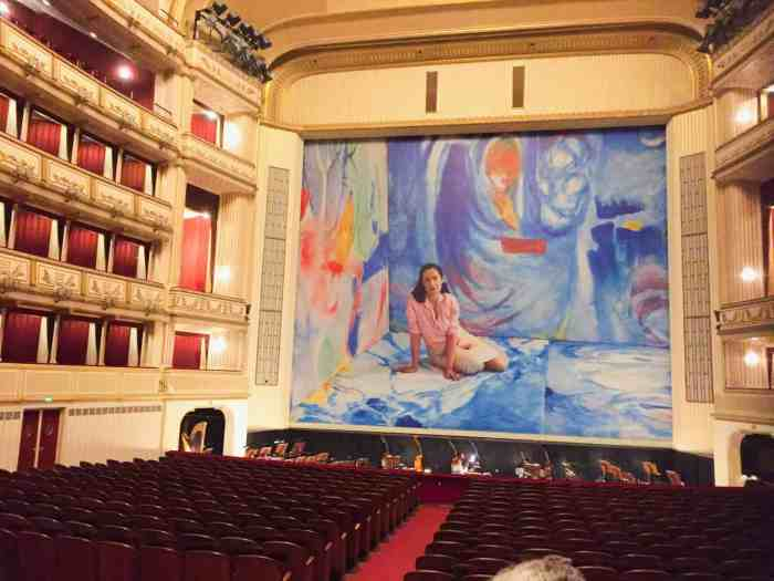 Inside of the Vienna opera house in Austria