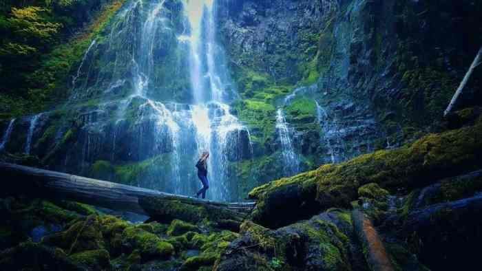 Proxy Falls Is Our Favorite Waterfall On Your Oregon Road Trip