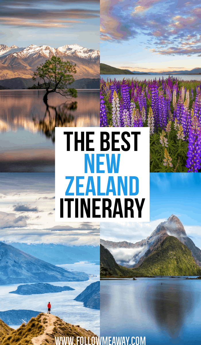 The Best New Zealand Itinerary | 10 Must-See Stops On Your New Zealand South Island Itinerary | What to do in New Zealand | How to plan a trip to New Zealand's South Island | Wanaka Tree New Zealand | Roys Peak Hike in New Zealand | New Zealand travel tips