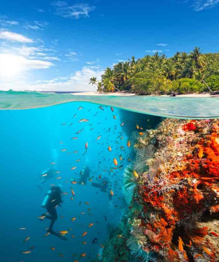 shoot wide when composing your GoPro shots underwater