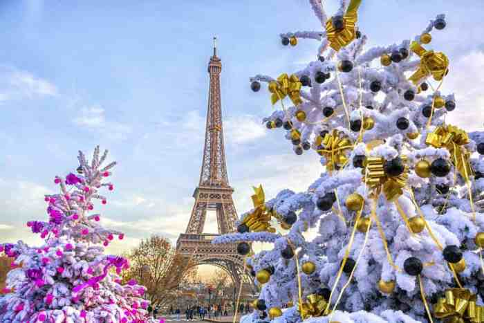 The eiffel tower all dressed for christmas in paris