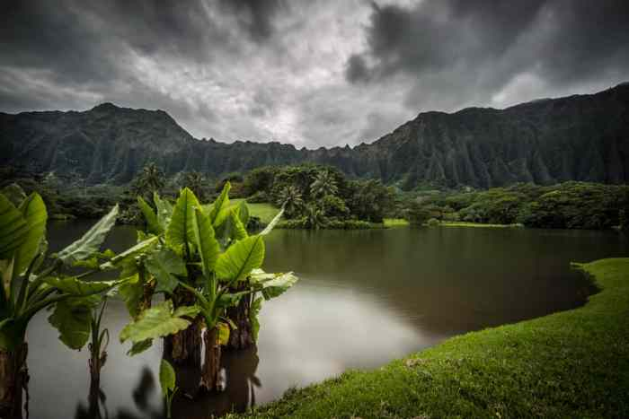 Add a poncho to your Hawaii packing list: it isn't always sunny there! It can be rainy and gloomy like in this photo!