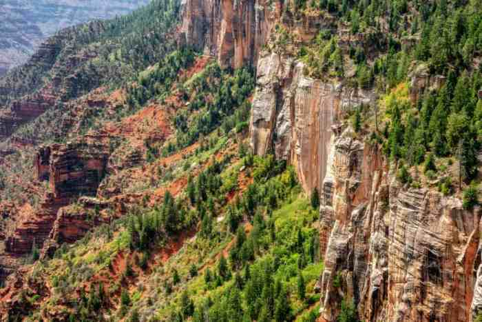 the North Kaibab Trail is one of the best Grand Canyon hikes for viewing waterfalls