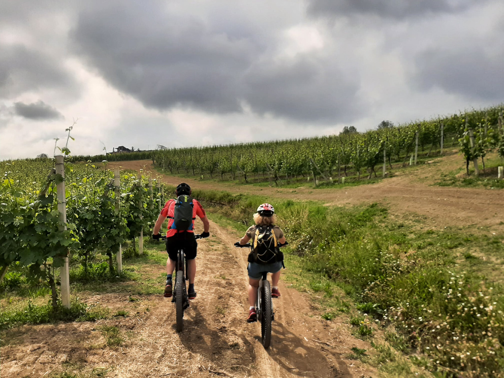 """Featured image for """"Avvicinamento alle Langhe in ebike"""""""