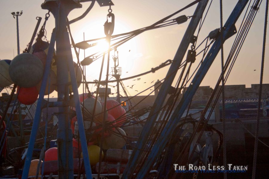 Fishing boats in Essaouira port