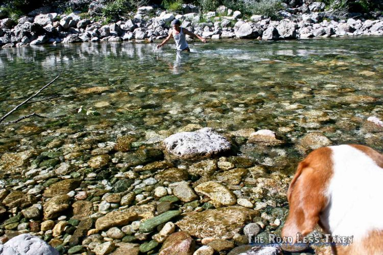 Visit Tara Canyon, Montenegro