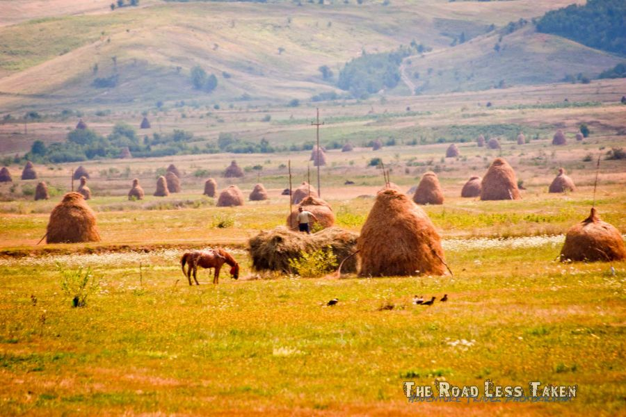 Farmland in Maramures, Romania