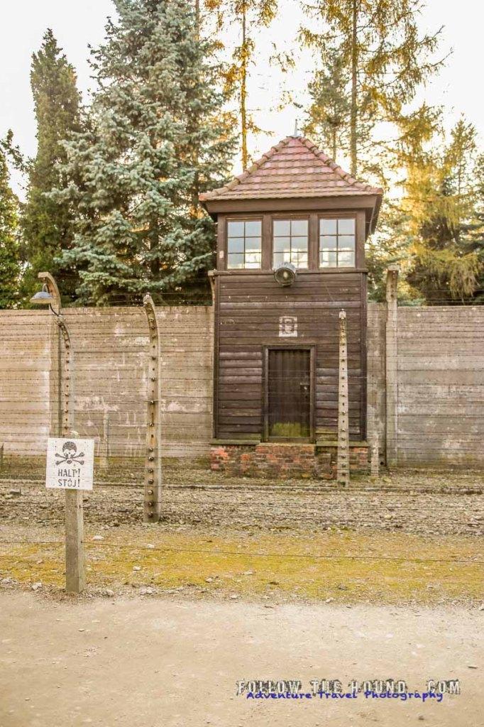 Auschwitz-15