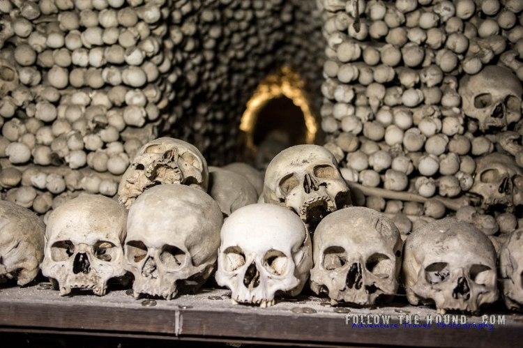 Church Bones -1