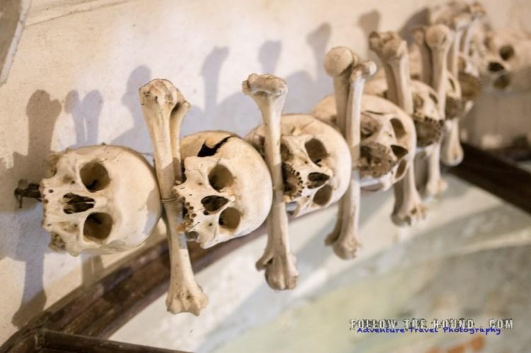 Church Bones -3