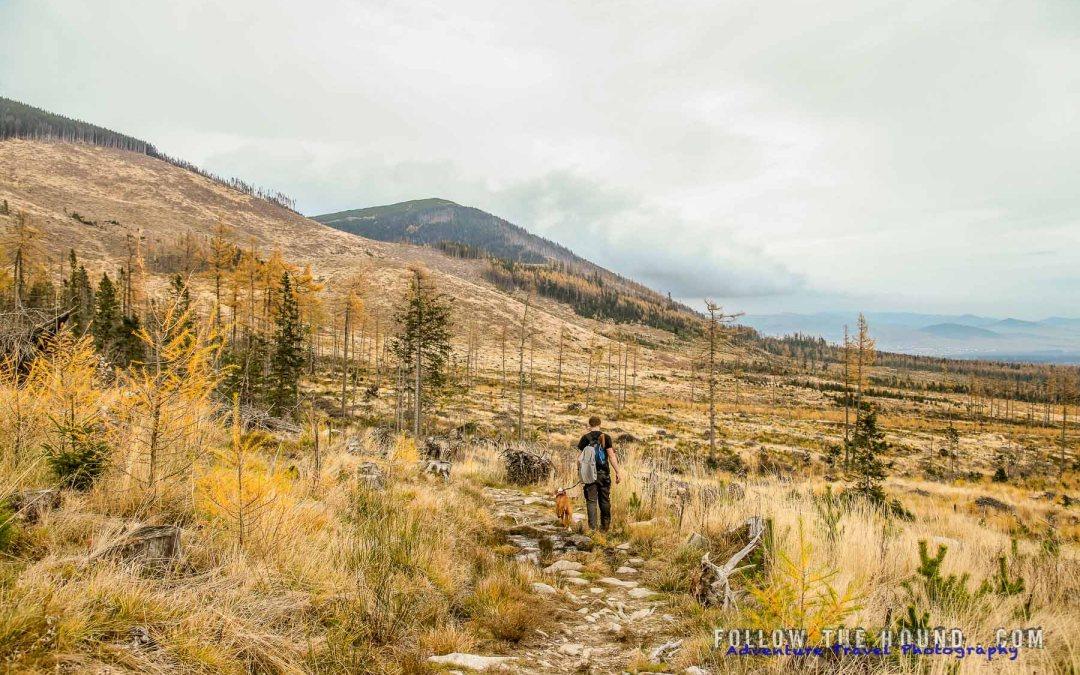 Trekking in the High Tatras