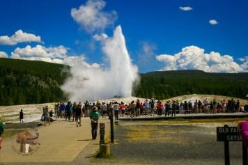 Yellowstone Glacier (2 of 28)
