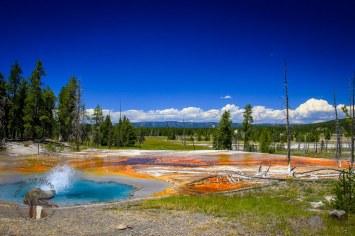 Firehole Spring #Yellowstone #NationalPark