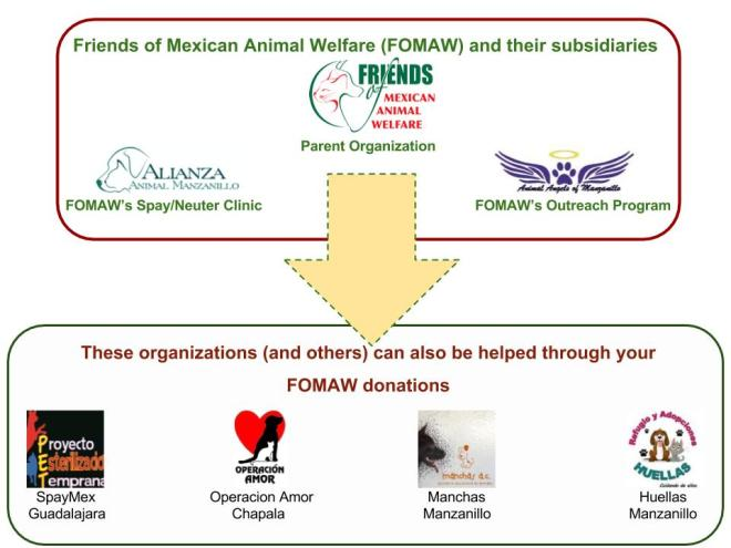 FOMAW helps animal welfare organizations