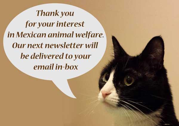 Thanks for interest in MX animal welfare