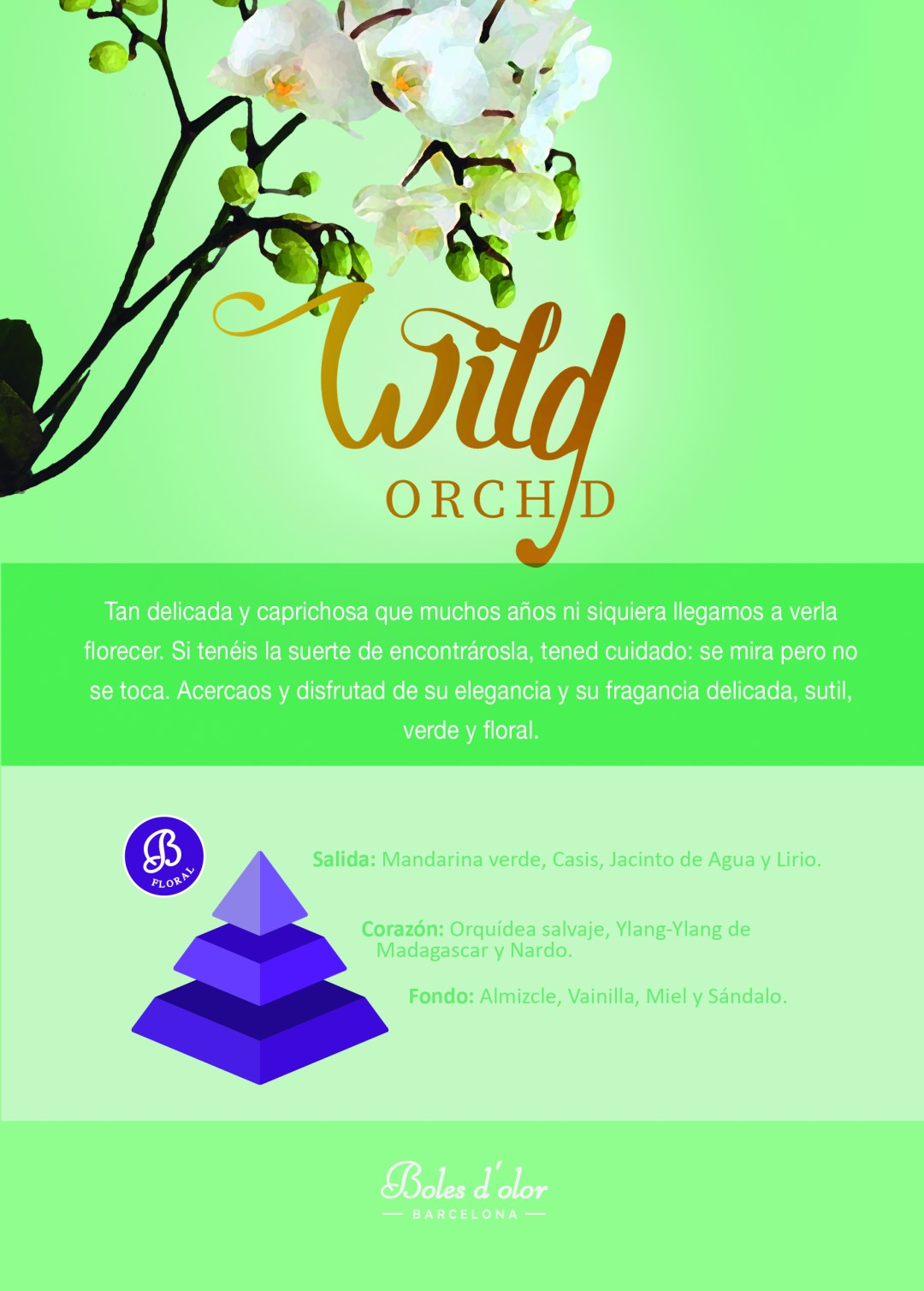 WILD ORCHID Piramide Ambients