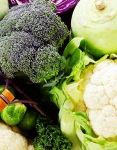 Grouping vegetables according to plant families also louis bonduelle rh fondation louisbonduelle