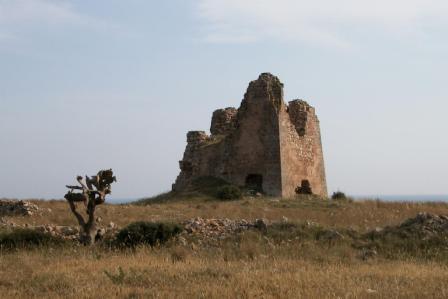 L'asfodelo (uluzzu), erba degli Eroi