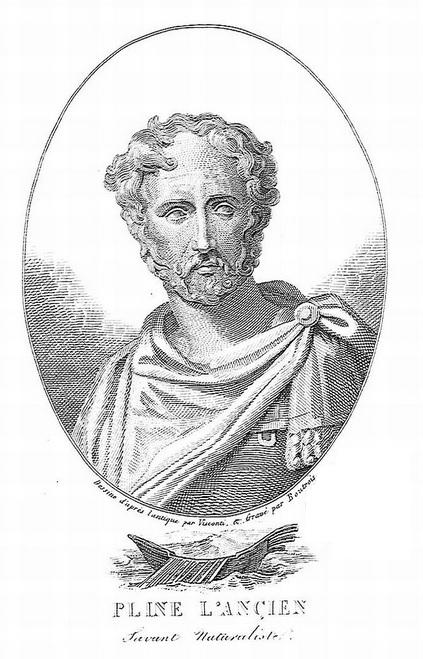 immagine tratta da http://www2.biusante.parisdescartes.fr/img/index.las?mod=s&tout=plinius