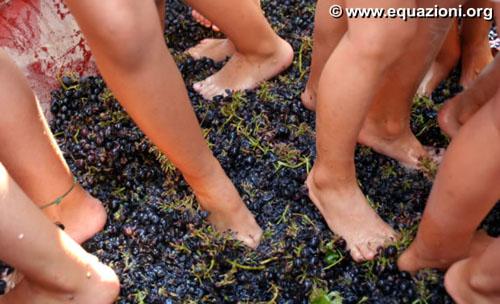pigiatura del l'uva con i piedi