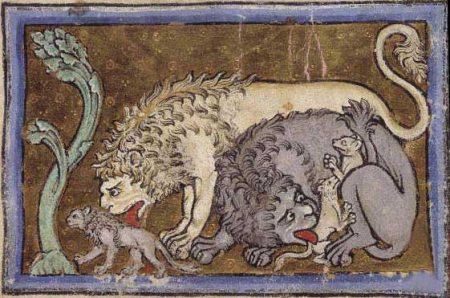 """Un """"bestiario"""" medievale sulle antiche travi della Cattedrale di Nardò (4)"""