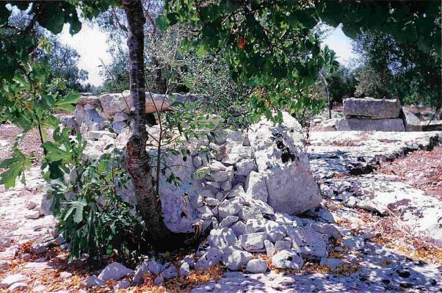Dolmen Resti di un possibile tumulo con cista dolmenica all' interno, di cui restavano questi tre ortostati laterali, e pietrame minuto ... tutto scomparso