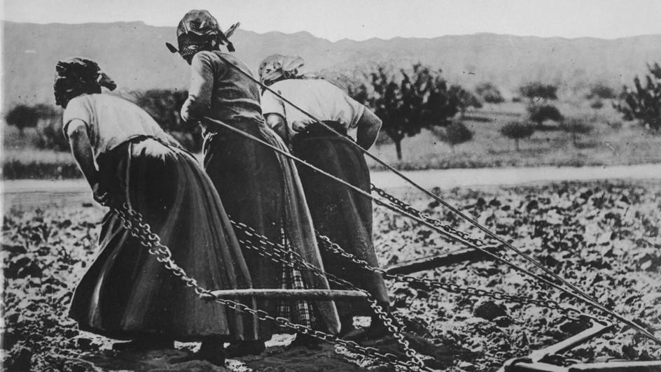 Grande guerra e abbattimento delle barriere domestiche in Terra d'Otranto