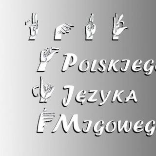 kurs pjm B1 - Kurs Polskiego Języka Migowego - poziom B2