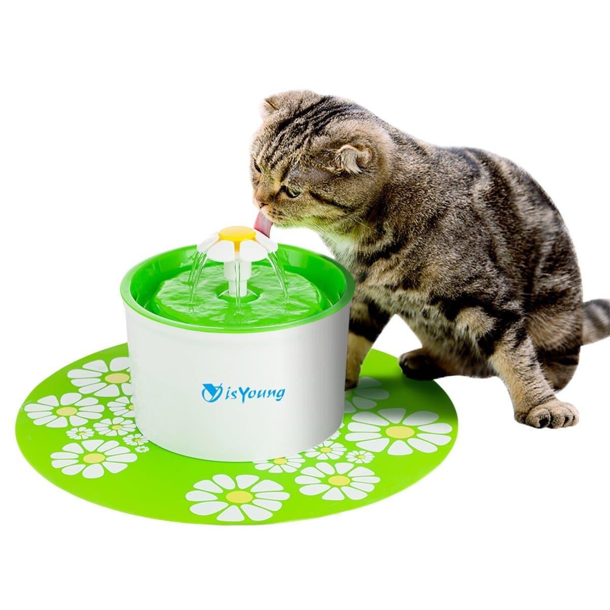 fontaine a eau pour chat 2021