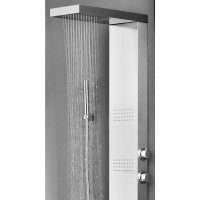 Alberni Stainless Steel Shower Panel with Massage Jets ...