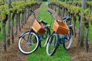 FONTBONNE - Sortie Vélo de Galargues à Sommières @ de Galargues à Sommières.. Rendez vous à 10h15 devant l'église..