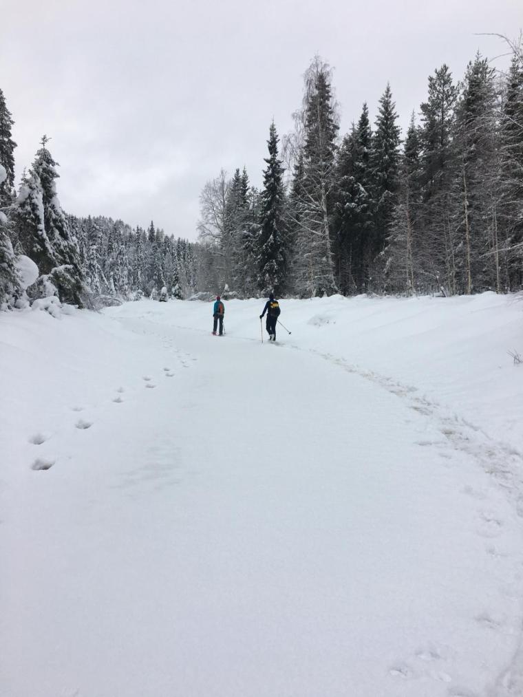 Viaggio n Lapponia in inverno