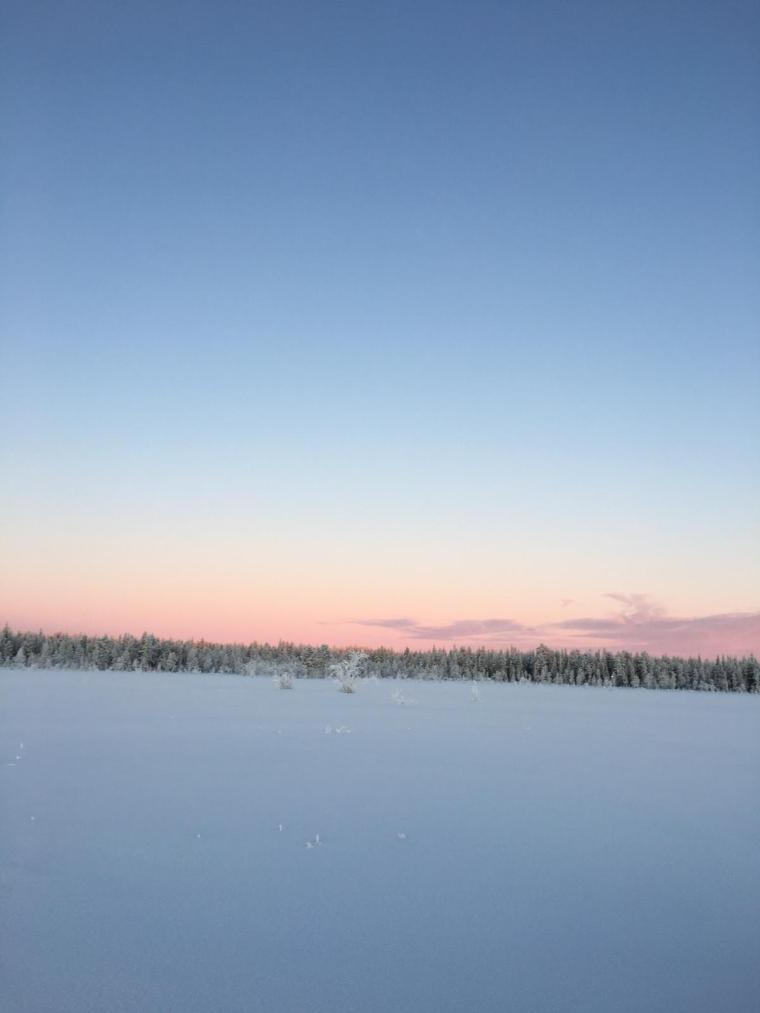 Visit Lapland in Winter
