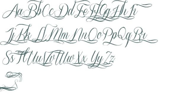 Fancy Cursive Fonts Ellida Bold Premium Font And