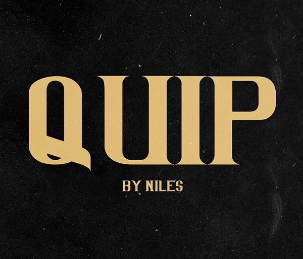 QUIP Font
