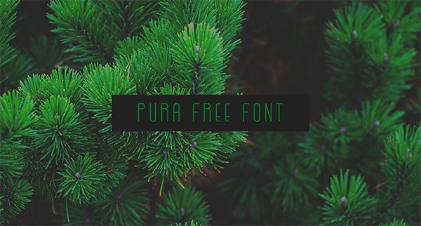 Pura Font