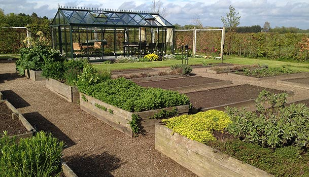 The kitchen garden in May
