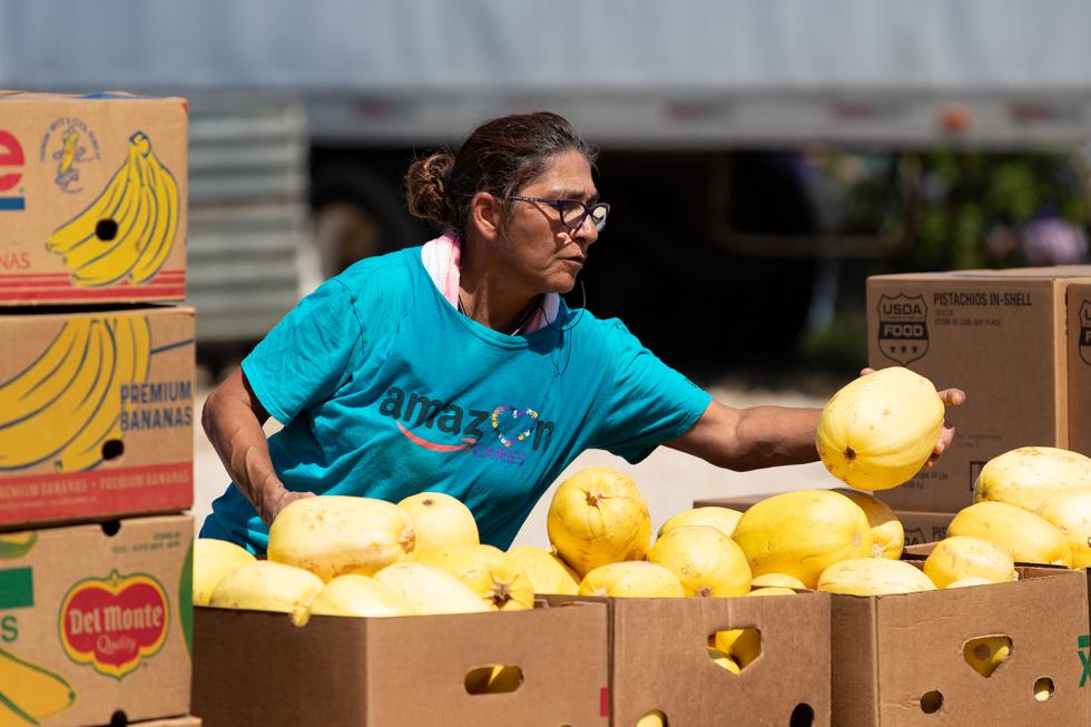 Volunteer Profile: Amazon (July 31)
